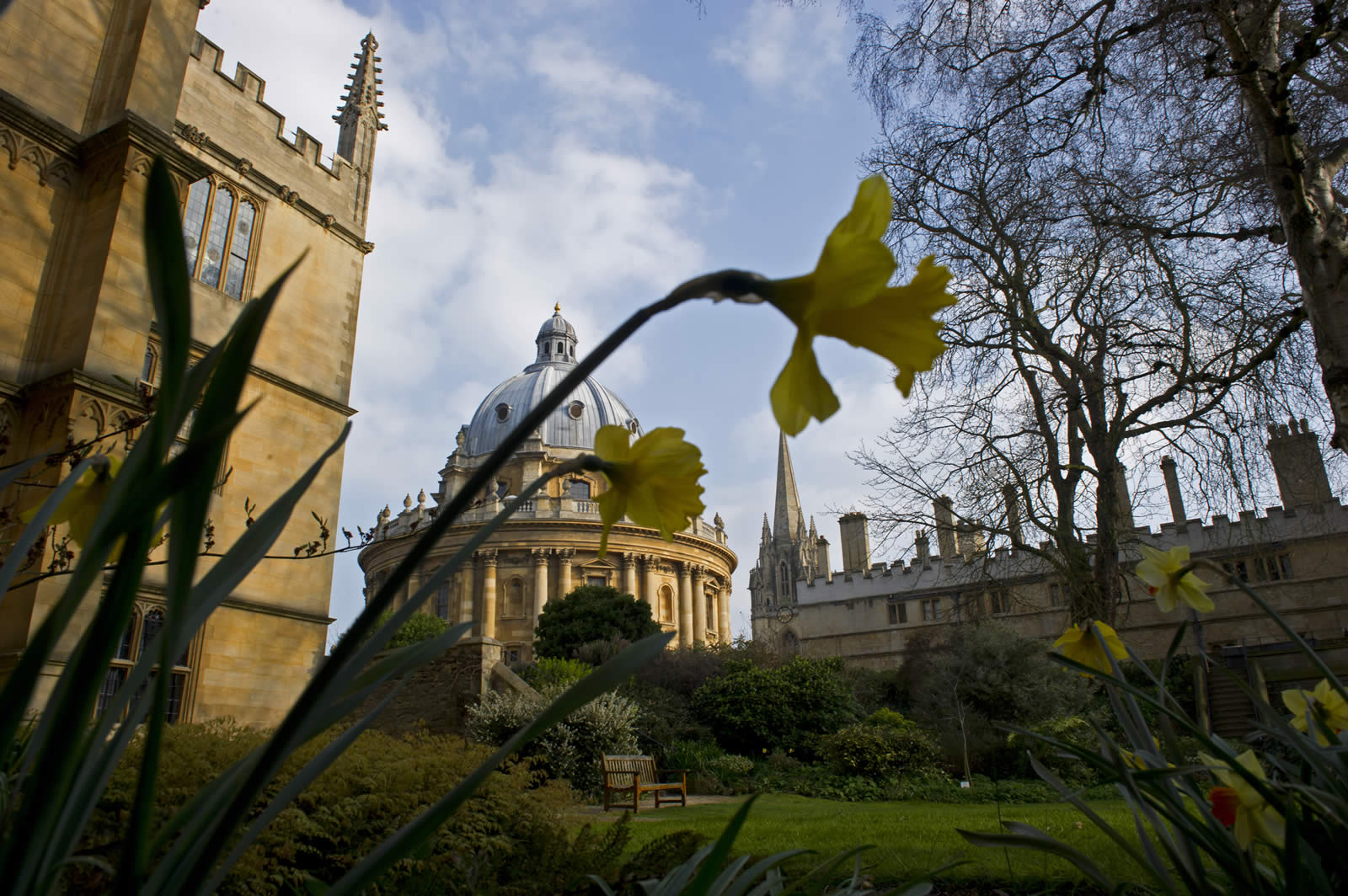A view from Exeter College gardens with the Radcliffe Camera and the spire of the University Church of St Mary the Virgin in the centre, the Bodelian Library on the left and Brasenose College on the right.